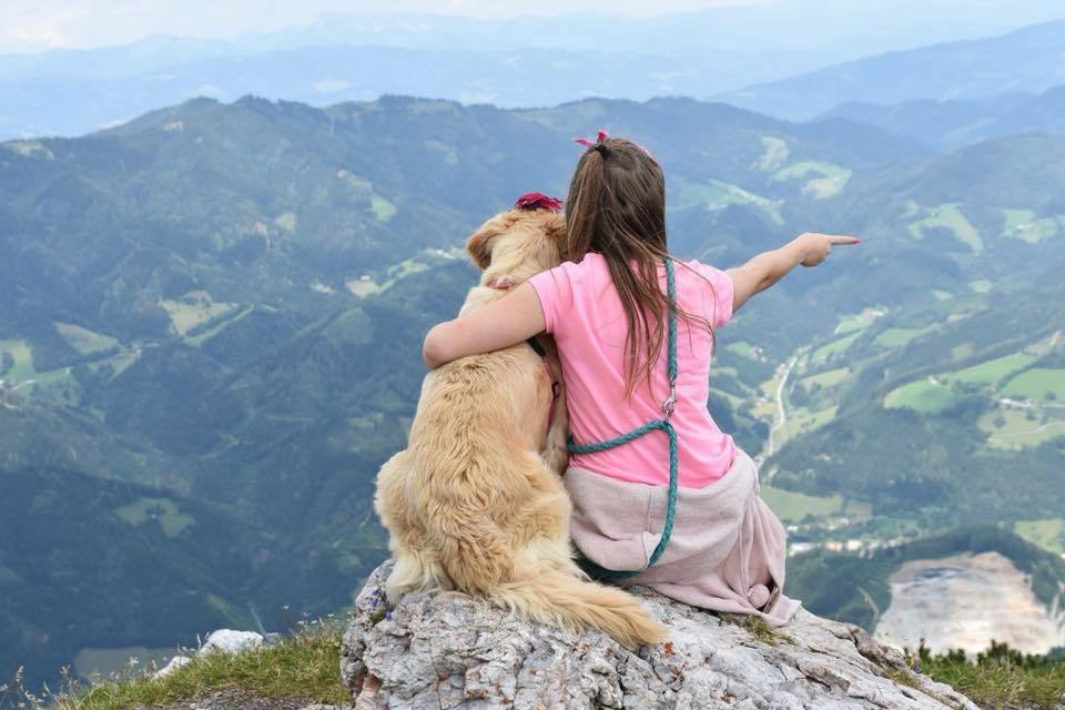 Shared challenges and experiences contribute to a strong human-dog bond