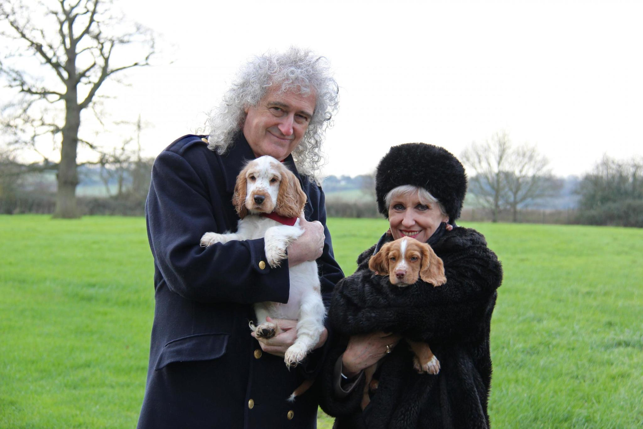 Brian May and his wife Anita Dobson with the Cocker Spaniel puppies