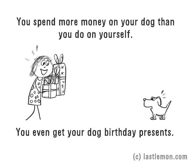 You spend more money on your dog than you do on yourself.