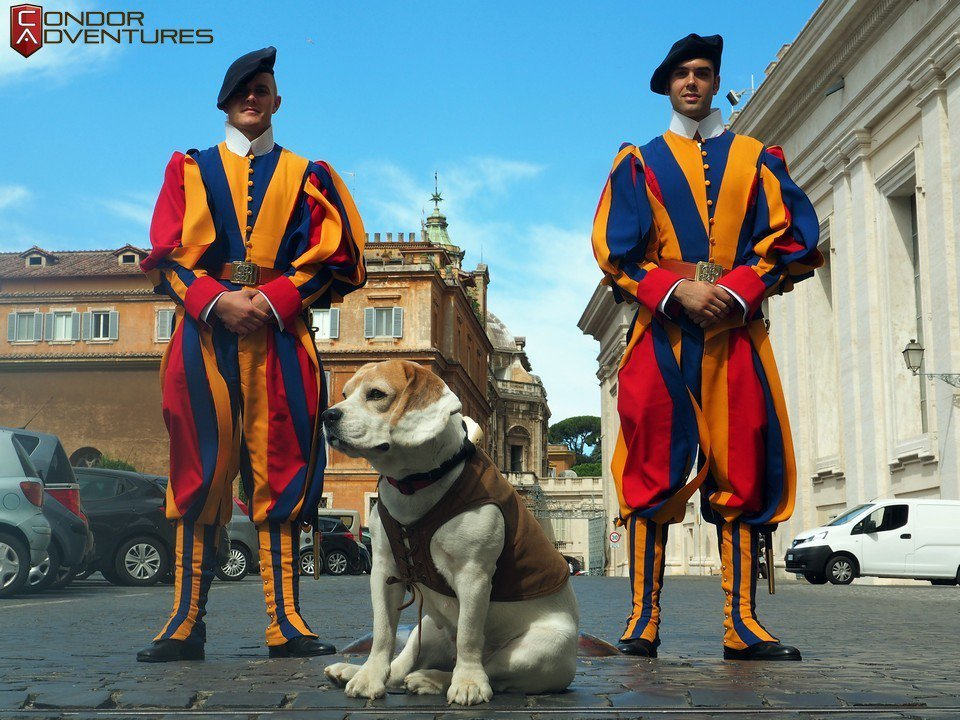 Brigi and the Swiss Guard