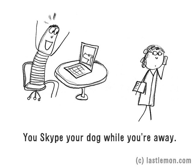 You Skype your dog while you're away