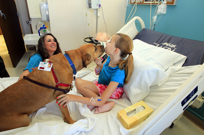 The help of therapy dogs is priceless for patients