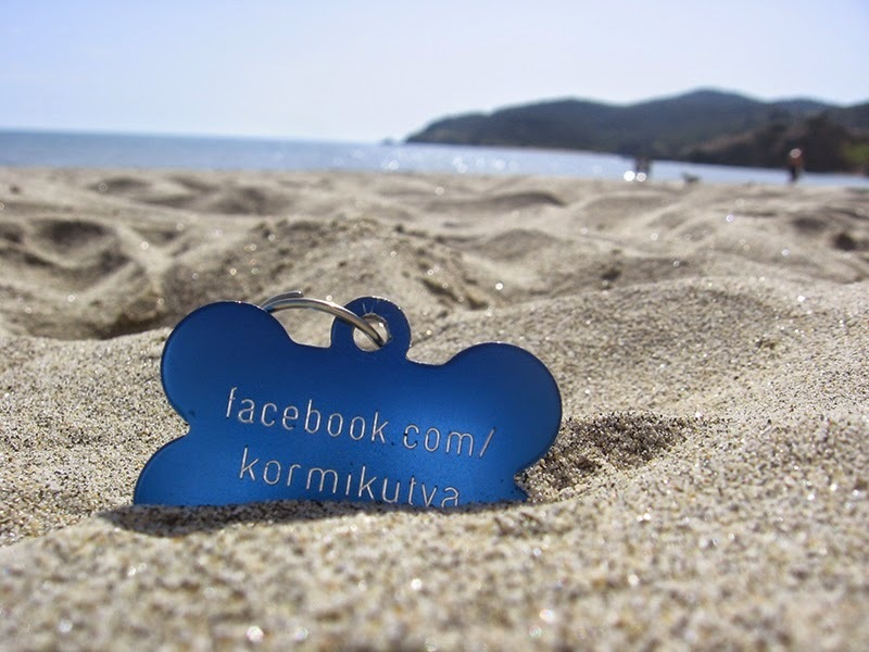 Kormi's name tag - Visit her Facebook-page for more photos