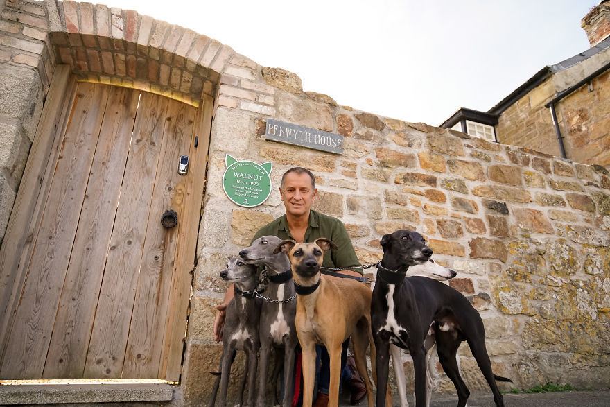 Walnut the Whippet - Starting with an open invitation from his owner, Mark, for fellow dog lovers to join them on their final walk, Walnut's story warmed the hearts of a nation. From across the country, hundreds of two and four-legged friends travelled to