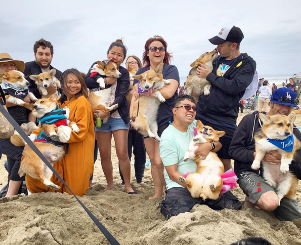 Everybody enjoyed the Corgi beach party despite the cloudy and rainy weather