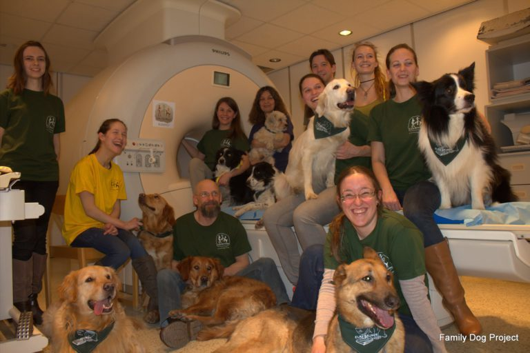 Trainers and dogs around the fMRI scanner