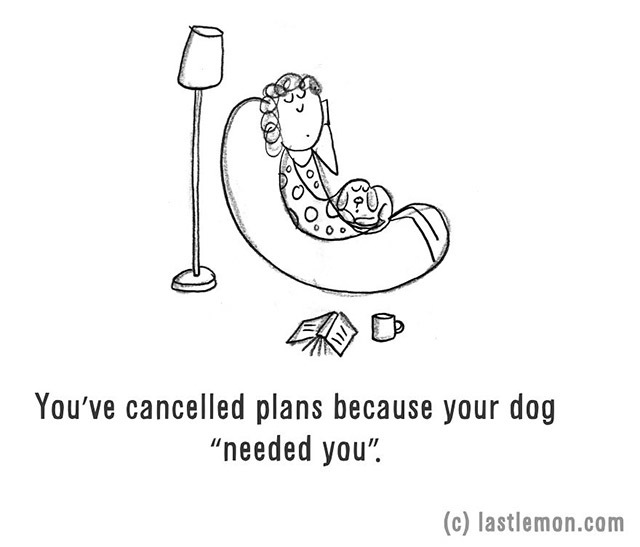 You have cancelled plans because your dog needed you