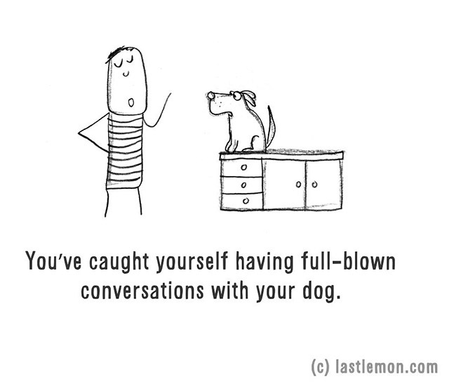 You've caught yourself having full-blown conversations with your dog.