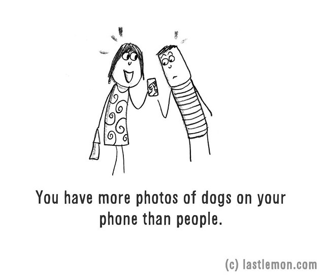 You have more photos of dogs on your phone than people.