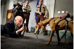 This Hungarian Vizsla is the Minnesota Capitol's new bomb-sniffing dog