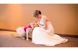 A touching photo of a bride and her service dog