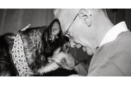 Senior volunteer adopts dying dog