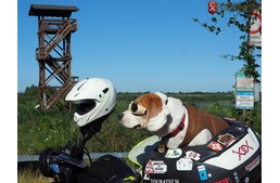 Dog On Motorcycle – Italy through the eyes of a motorcyclist and his awesome dog