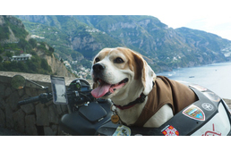 Dog On Motorcycle – Italy through the eyes of a motorcyclist and his awesome dog – Part 3.