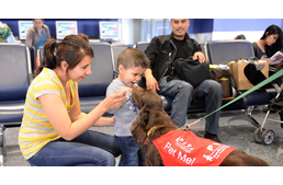 Relax with therapy dogs before your flight