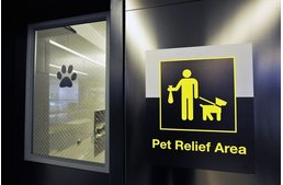 Dogs get to use their own bathrooms at JFK airport