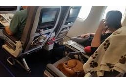 Travelling with your dog in the airplane's cabin?