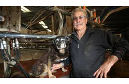 'World's oldest dog' Maggie the Kelpie dies